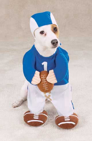 funny halloween dog costumes