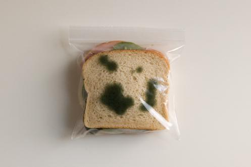 anti theft sandwich bags 2 16 Anti Theft Gadgets and Designs to Deter Thieves