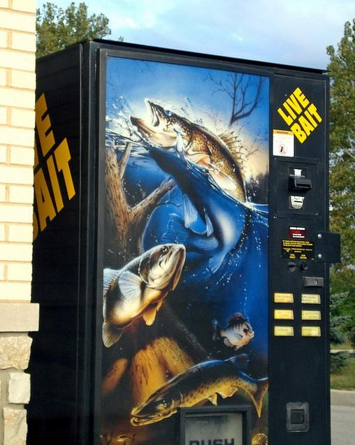 live bait vending machine image