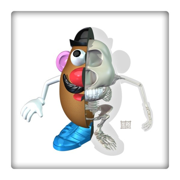 mr potato head anatomy design image