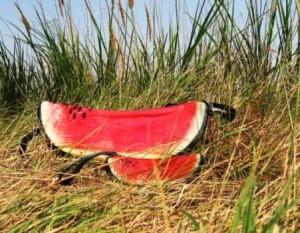 watermelon-bag-design-4