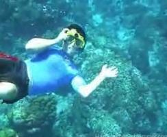 underwater digital camera photos