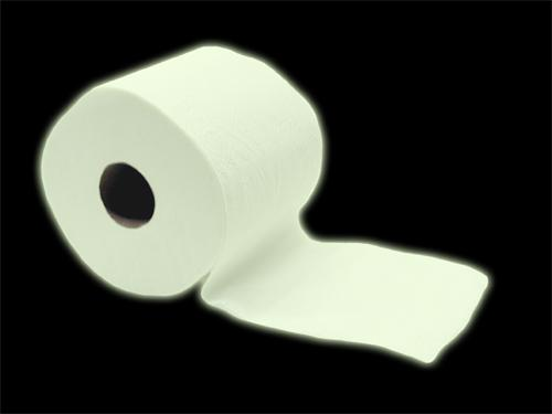 glow in the dark toilet paper gag