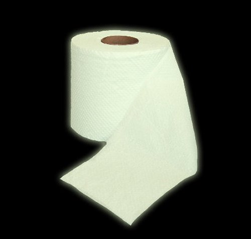 funny toilet paper glows in the dark