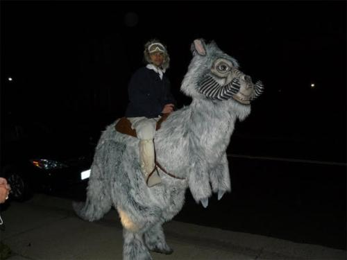 star wars tauntaun costume
