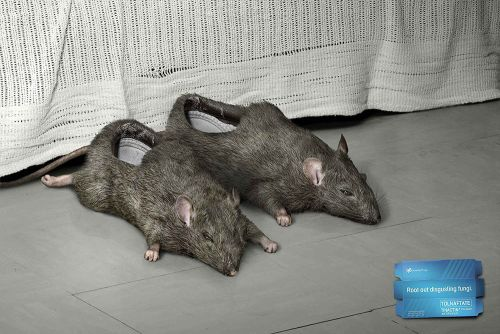 dead rats slippers design