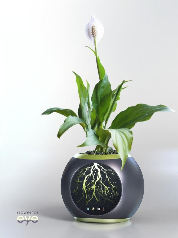 """""""EYE"""" Flower Pot"""