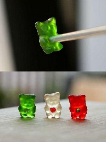 Gummi Bear's Dream To Go Under the Knife (2)