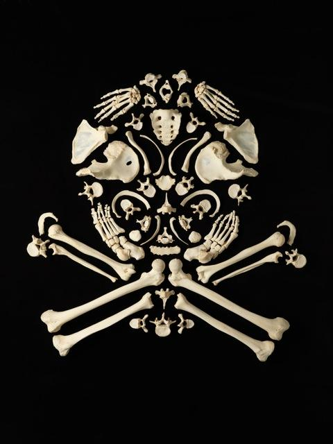 Real Skeleton Art (5)