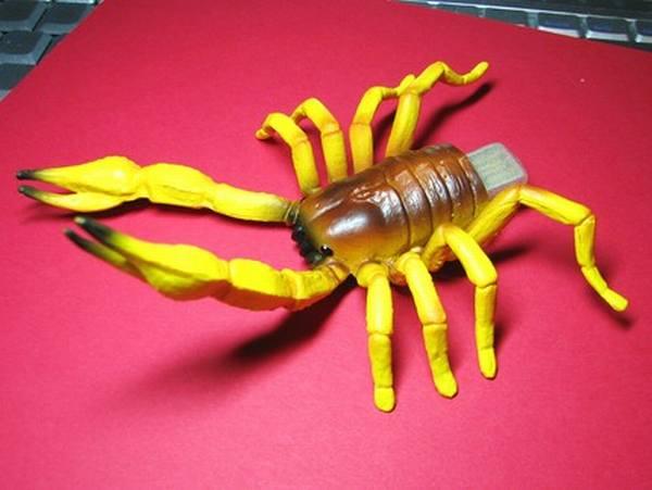 Scorpion-USB-Drive