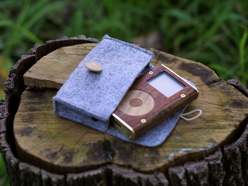 wooden ipod with case
