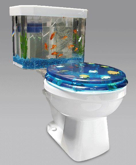 2 Fish-Tank-Toilet