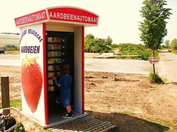 fresh strawberries vending machine image