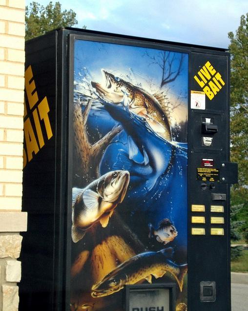 live bait vending machine image