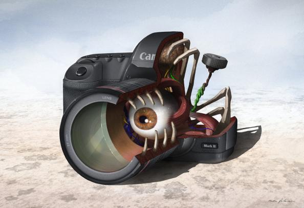 canon 5d mark ii anatomy design image