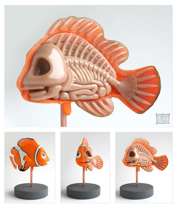 nemo anatomy design image