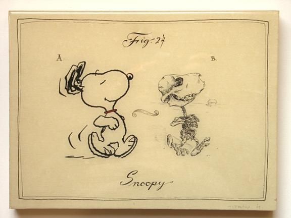snoppy anatomy design image